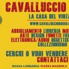CAVALLUCCIO ROSSO