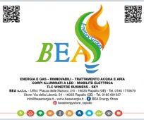 BEA ENERGY GROUP