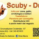 SCUBY-DU